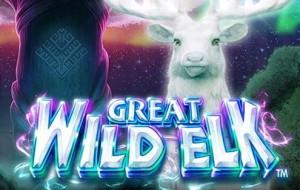 Great Wild Elk
